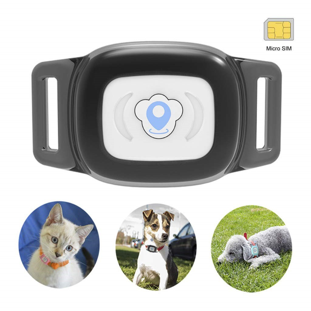 Bartun-gps-pet-tracker