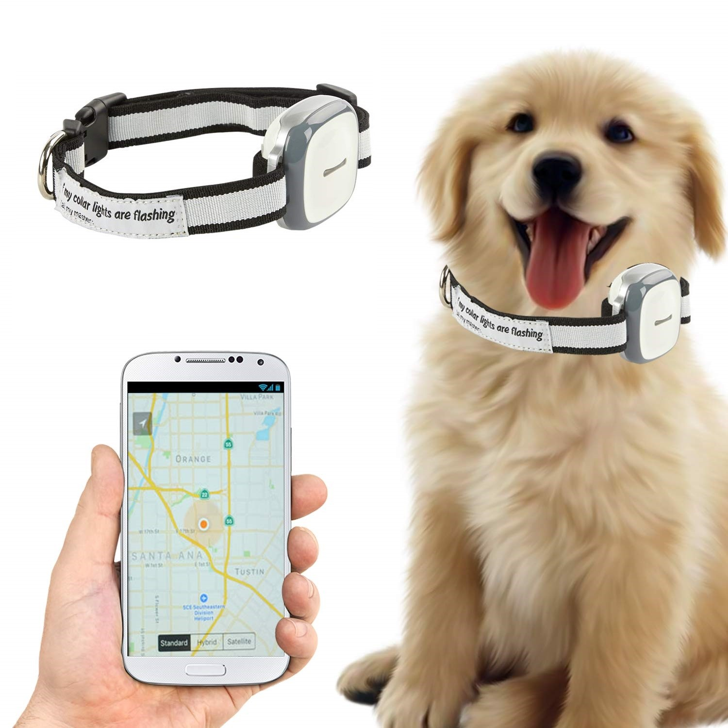 Talis-gps-pet-tracker